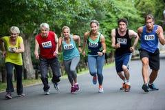Marathon athletes on the starting line Royalty Free Stock Image