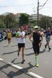 Marathon 2014 de Belgrade Image stock