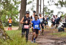 Marathon Fit people running race at park. Marathon running race Phu Kradueng Wake Up Run at park Loei of thailand 1 October 2017 Royalty Free Stock Photography