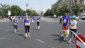 Marathon stock video footage