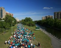 Marathon and Rideau Canal royalty free stock image