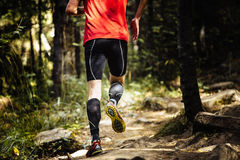 Marathon runner running on stones in forest Stock Image