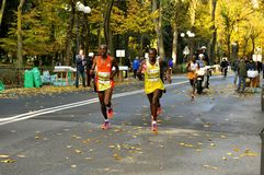 Marathon runners in Florence , Italy Royalty Free Stock Photos