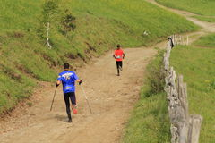 Marathon runners in the mountains Royalty Free Stock Photo