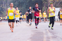 Marathon runners in 2015 race Stock Image