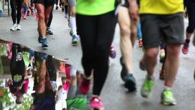 Marathon runners stock video footage