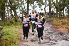 Marathon Fit people running race at park. Marathon running race Phu Kradueng Wake Up Run at park Loei of thailand 1 October 2017 Stock Images