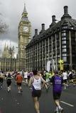Marathone di Londra della flora Immagine Stock