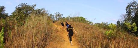 Marathonhinterseitentriebe Stockbilder