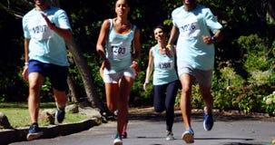 Maratońskie atlety biega w parku 4k zdjęcie wideo