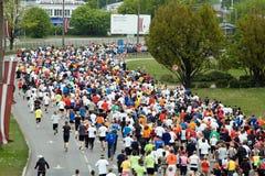 maratonów biegacze Obraz Stock