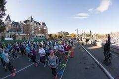 maraton Royaltyfri Fotografi