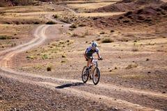 Maraton för affärsföretagmountainbikelängdlöpning Arkivfoton