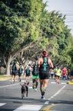 Maraton Lima 42k arkivfoton