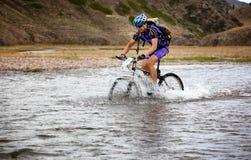 Maratona através dos campos do Mountain bike da aventura Imagens de Stock Royalty Free
