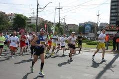 Maratona 2014 de Belgrado imagens de stock