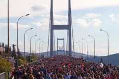 35a maratona de Istambul Eurasia Fotos de Stock Royalty Free