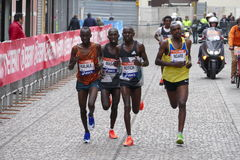 A 3a maratona de Veneza Foto de Stock