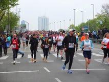 Maratona de Viena foto de stock royalty free