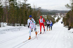 maratonen skidar Royaltyfria Bilder