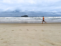 Maratonlöpare Fotografering för Bildbyråer
