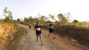 maratonlöparetrail Fotografering för Bildbyråer