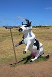 Marauder de Moorine - vaca engraçada do pirata Foto de Stock Royalty Free