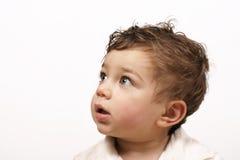 Maravilha do menino fotografia de stock