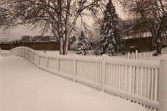 Maravilhoso nevado Imagem de Stock Royalty Free
