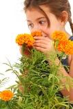 Maravilla que huele de la muchacha Fotografía de archivo libre de regalías