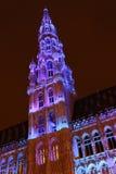 Maravillas del invierno de Bruselas - 06 Foto de archivo libre de regalías