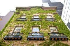 Maravillosamente edificio de Architectured Fotos de archivo
