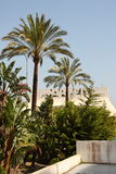 Marbella Lizenzfreie Stockbilder