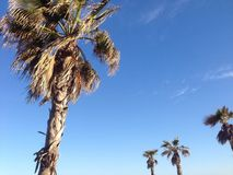 Marbella Στοκ εικόνα με δικαίωμα ελεύθερης χρήσης