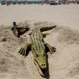 MARBELLA, ANDALUCIA/SPAIN - 23 MAI : Sculpture en sable de crocodile dessus Photographie stock