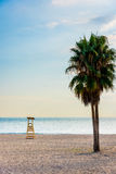 Marbella beach in evening light (vertical) royalty free stock photography
