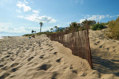 Marbella dunes and palmtree. A beach in Marbella with dunes and palmtrees with beautiful sky Royalty Free Stock Photos
