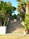 Marbella view of a staicase Royalty Free Stock Image