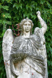 Marble Angel Statue. An old marble statue with green background Royalty Free Stock Photos