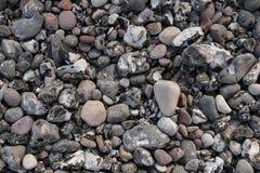 Marble beach close up Rügen. Beach marbles close up  at Königstühl Nationalpark, Rügen, Germany Royalty Free Stock Image