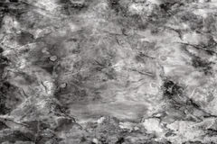 Marble black and white texture Stock Image