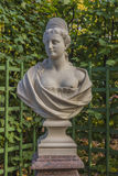 Marble bust in the summer garden Royalty Free Stock Images