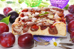 Marble cake with plums and almonds Stock Photos