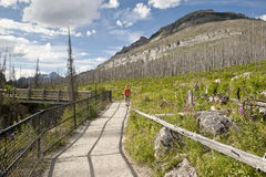 Marble Canyon Trail Stock Images