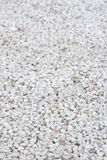 Marble chip plaster close-up background Stock Image