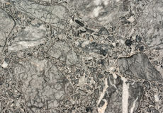 marble concrete gray terrazzo texture Stock Photos