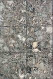 marble concrete gray terrazzo texture Stock Photo