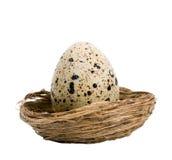 Marble egg Stock Photos
