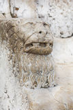 Marble head of a lion. Stock Image