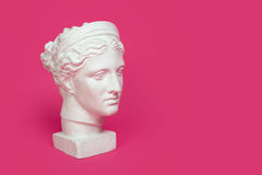 Marble head of young woman, ancient Greek goddess bust isolated on pink background with space for text. Marble head of young woman, ancient Greek goddess bust Royalty Free Stock Photos